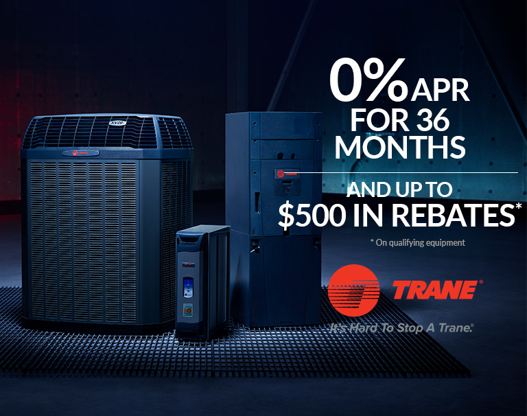 Special offer March 19